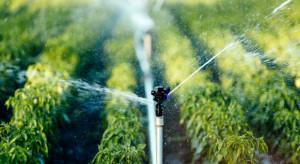 Nawadnianie sadów i jagodników – uzdatniamy wodę