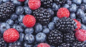 Białoruś: Zbiory owoców jagodowych w 2019 r. wynosiły 160 tys. ton