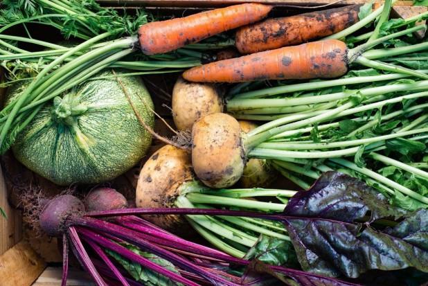 Mirosław Fucia: Produkcja warzyw staje się coraz trudniejsza