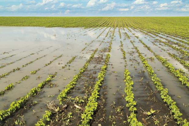 MRiRW: od czwartku rusza nabór wniosków o wsparcie dla spółek wodnych