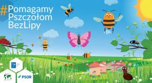 PSOR inicjuje drugi rok kampanii edukacyjnej #PomagamyPszczołomBezLipy