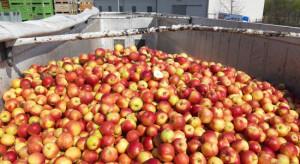 Ukraińskie śledztwo ws. przetwórcy owoców działającego także w Polsce