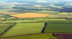 KOWR ogłosił przetarg na system satelitarnego monitorowania upraw rolnych
