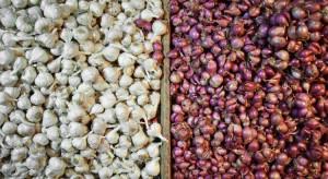 Indonezja zniosła obostrzenia na import cebuli i czosnku