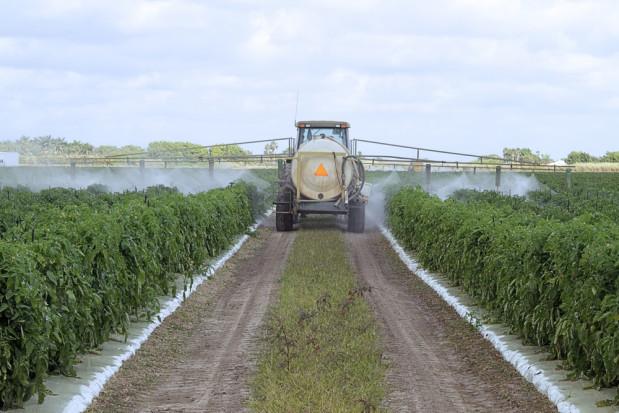 Czy mogą nastąpić problemy z dostępem do pestycydów?