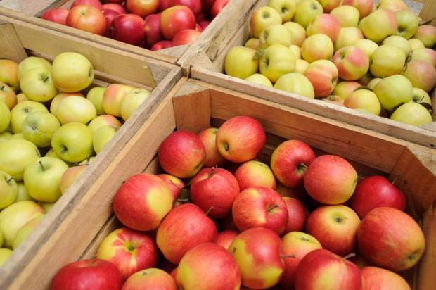 Rynek jabłek w marcu: Zapasy, ceny i eksport