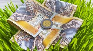 ARiMR informuje o wypłatach płatności bezpośrednich