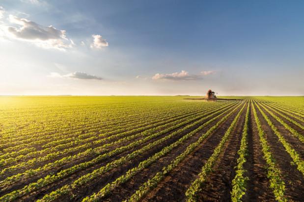 Ułatwienia dla rolników przekraczających granicę z Czechami, Słowacją i Litwą