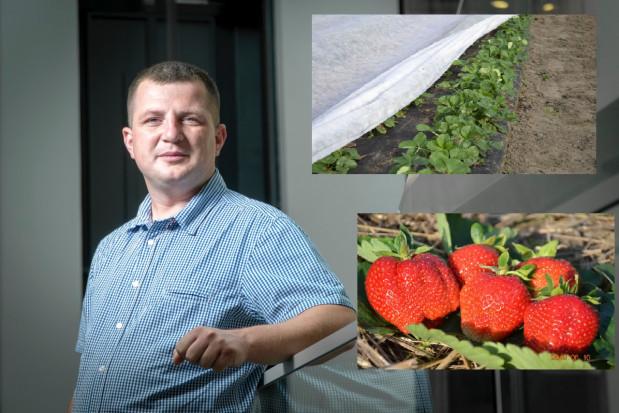 Plantacje truskawek po zimie: Pierwsze zabiegi i zagrożenia – rozmowa z Albertem Zwierzyńskim (wideo)