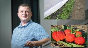 Plantacje truskawek po zimie: Pierwsze zabiegi i zagrożenia (wideo)