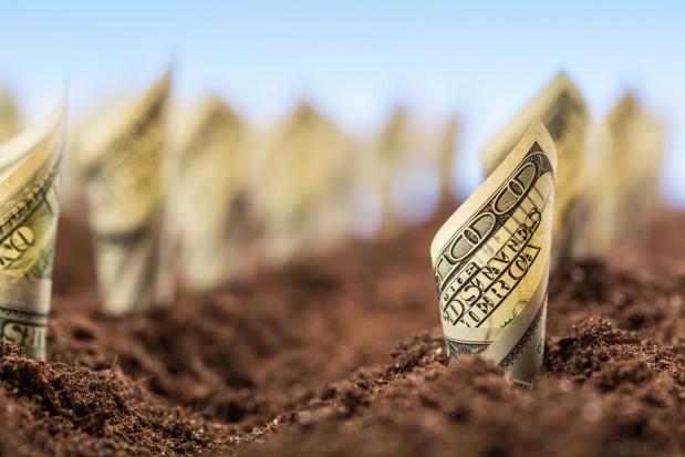 WIR apeluje o działania ratujące płynność finansową gospodarstw