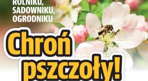 Chrońmy pszczoły - apel do rolników i sadowników w dobie koronawirusa