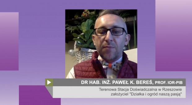 Prof. Bereś: Wiele gatunków szkodników bez problemu przezimowało (wideo)