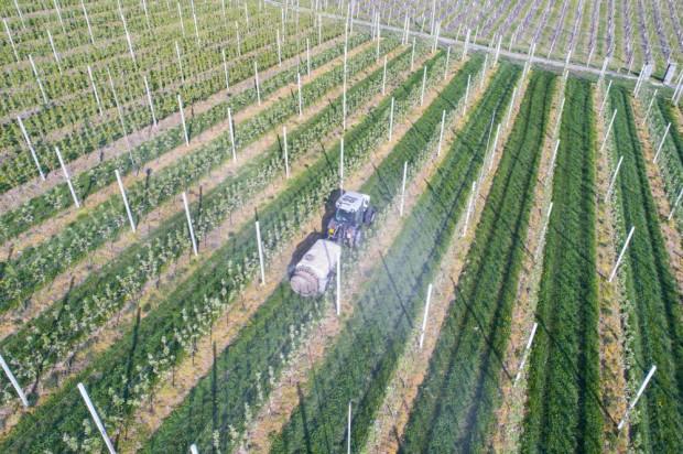 Koronawirus ma spory wpływ na dystrybucję i ceny środków do produkcji ogrodniczej