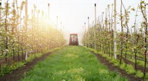 Tarcza antykryzysowa - ułatwienia w ochronie roślin