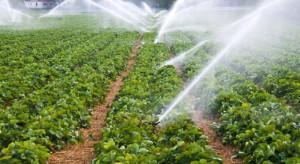 Mija termin składania wniosków o dotację na nawadnianie gospodarstwa