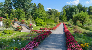 Kraków: W najstarszym ogrodzie botanicznym w Polsce wiosna w pełni