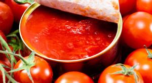Wielka Brytania: sprzedaż pomidorów w puszkach wzrosła o 30 proc.