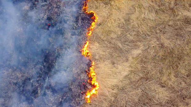 Straż Pożarna: obszar objęty pożarem w Biebrzańskim Parku Narodowym nie powiększa się