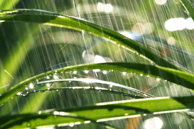 Pogoda: możliwe przelotne opady deszczu i burze