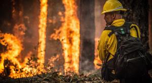 Strażacy: W weekend 1 745 pożarów, w tym 244 w lasach