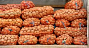 Wielkopolskie: Nielegalni imigranci przyjechali do Polski z transportem ziemniaków