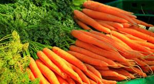 Analitycy BNP Paribas: z powodu suszy ceny owoców i warzyw będą rosły