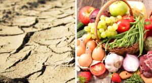 Sztuczna inteligencja może pomóc w przeciwdziałaniu skutkom suszy