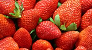 Bronisze: Mało krajowych truskawek i jabłek. Są drogie!