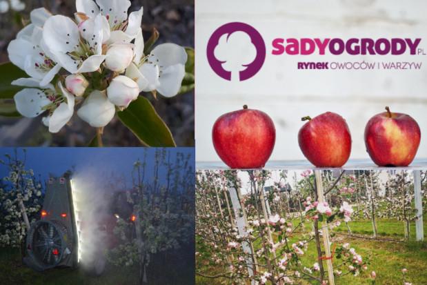 W kwietniu portal SadyOgrody.pl odwiedziło 281 tys. unikalnych użytkowników!