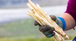 Karczmiska: Mężczyzna przyłapany na kradzieży szparagów