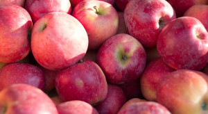 Ceny jabłek wzrosły w kwietniu pod wpływem popytu oraz malejących zapasów (analiza)