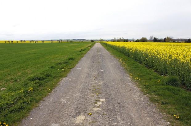 Małopolskie: prawie 13 mln zł na dofinansowanie remontów dróg do pól