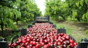 Francja: Otwarcie granic dla pracowników sezonowych z krajów UE
