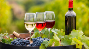 Winiarze chcą uratować polskie sadownictwo