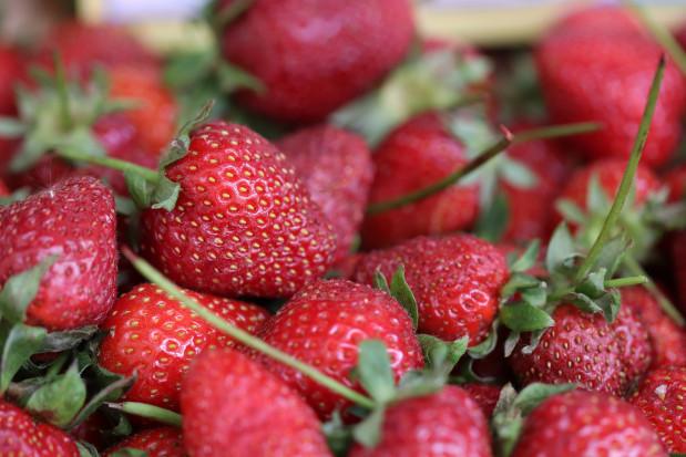Giełda Goławin: Jak kształtują się ceny truskawek?