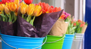 KE wprowadziła przepisy mające na celu zrównoważenie sytuacji w sektorze kwiatów i ziemniaków