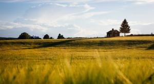 Kosiniak-Kamysz: agroturystyka wykluczona z pomocy rządowej