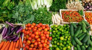 Rynek warzyw pod presją importu. Sezonowy wzrost cen mniejszy niż przed rokiem