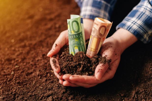 Ardanowski: 10 proc. rolników musi poczekać na wypłatę środków suszowych