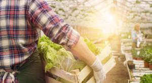 Pogoda i epidemia nie sprzyjają producentom owoców i warzyw