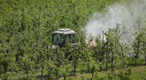 Pogoda sprzyja infekcjom parcha. Przed sadownikami trudny test umiejętności i refleksu