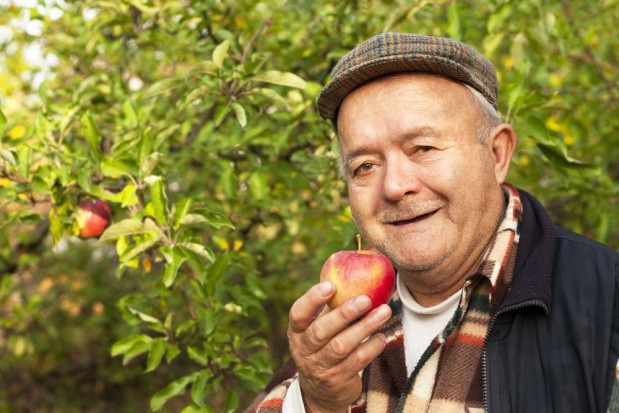 """NSZZ RI """"Solidarność"""": Nie ma decyzji ws. likwidacji konieczności przekazywania ziemi za emeryturę"""