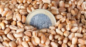 ARiMR: Ruszył nabór wniosków na dopłaty do materiału siewnego