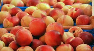 Węgry: Zbiory owoców z powodu przymrozków mogą być mniejsze o 40 proc.