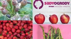 337 tys. unikalnych użytkowników SadyOgrody.pl w maju. Dziękujemy!