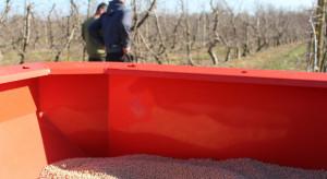 Raport IERiGŻ: Wzrosły ceny środków produkcji dla rolnictwa w Polsce
