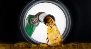 Analitycy spodziewają się wzrostu cen paliw