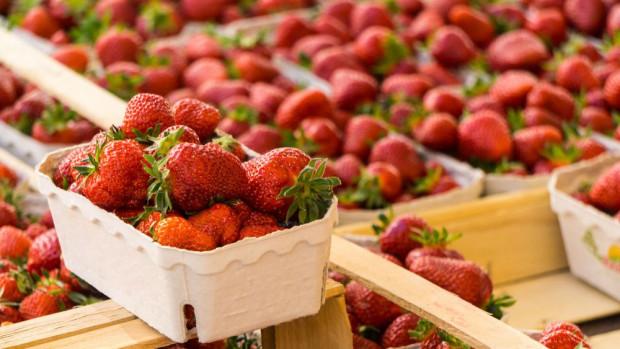 Truskawki 2020: Szczyt sezonu dopiero przed nami; ceny owoców spadają
