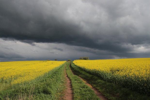IMGW wydał ostrzeżenia przed burzami z gradem na wschodzie kraju